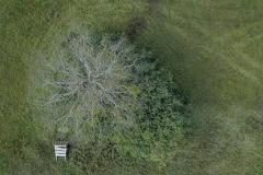 drone-1
